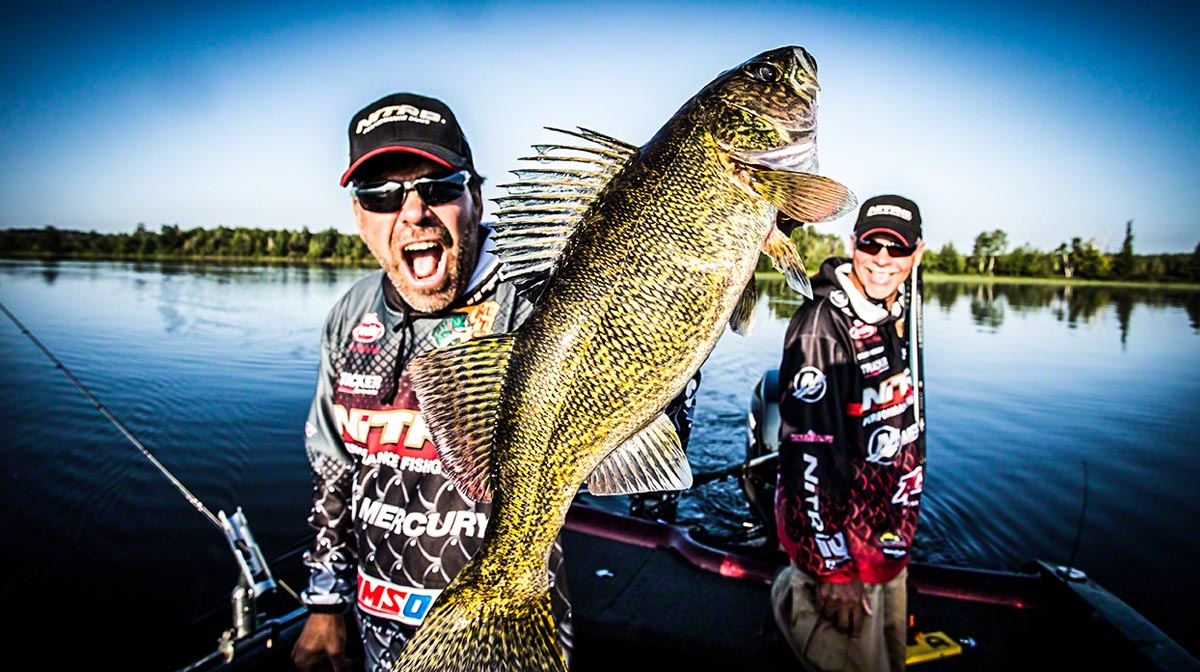 walleye photo